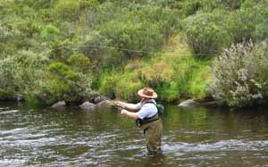 [Flyfishing on the Thredbo]